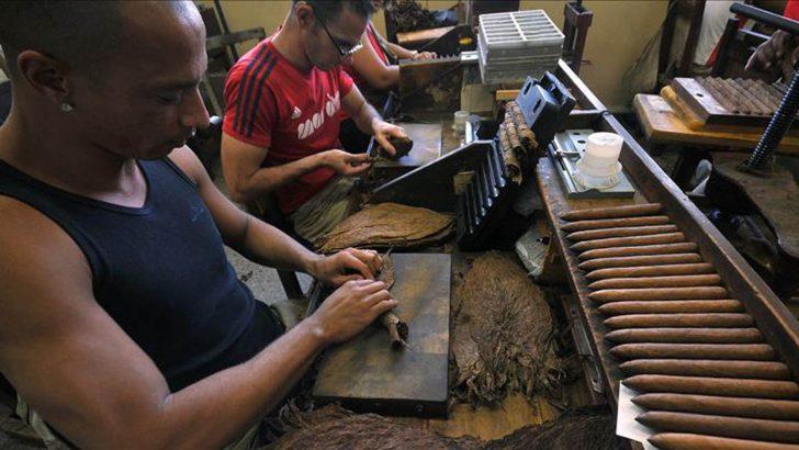 Banco Agrícola prestará 50 millones de pesos a tabaqueros de Valverde