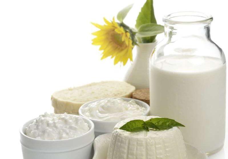 Cómo aprender a identificar los quesos y yogures de buena calidad
