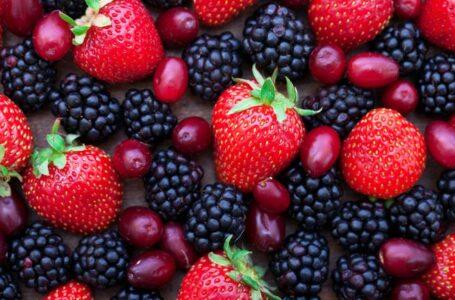 5 mitos alimentarios que carecen de sustento científico